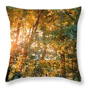 Let The Earth Arise Throw Pillow