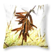 Let Us Celebrate Another Successful Year  Throw Pillow