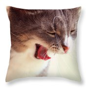 Lets Go Sleeping. Kitty Time Throw Pillow