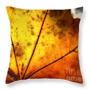 Letter Dropt From God? Throw Pillow