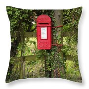 Letterbox In A Hedge Throw Pillow