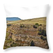 Lewis And Clark Park  Throw Pillow