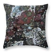 Lichen Abstract II Throw Pillow