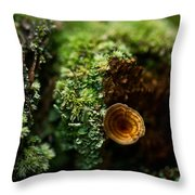 Lichen And Fungi 1 Throw Pillow