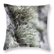 Lichen Niebla Podetiaforma Throw Pillow