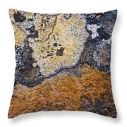 Lichen Pattern Series - 19 Throw Pillow