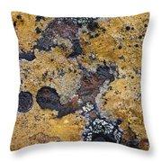 Lichen Pattern Series - 10 Throw Pillow