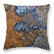 Lichen Pattern Series - 35 Throw Pillow