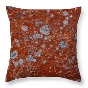 Lichen Pattern Series - 9 Throw Pillow
