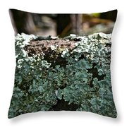 Lichens Lace Throw Pillow