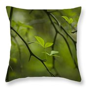 Life And Thorns Throw Pillow