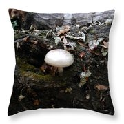 Life From Death Throw Pillow