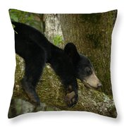 Life Is A Bear Sometimes Throw Pillow