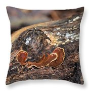 Life On A Log 3 Throw Pillow