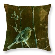Lifesong Throw Pillow