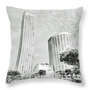 Light And Perspective Throw Pillow