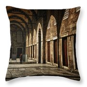 Light And Shadow Throw Pillow by Joan Carroll