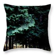 Light Forest Throw Pillow