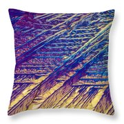 Light Micrograph Of Zalcitabine Ddc Throw Pillow