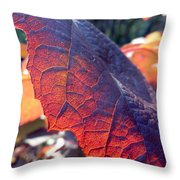 Light Of The Lifeblood Throw Pillow