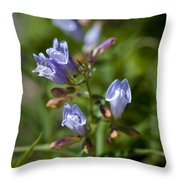 Light Purple Wild Penstemons  Throw Pillow