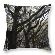 Light Through Live Oaks Throw Pillow