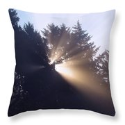 Lighting The Day Throw Pillow