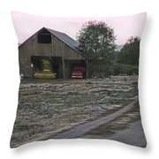 Lightly Colored Barn Throw Pillow