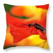 Lightning Bug On Gladiolus Throw Pillow