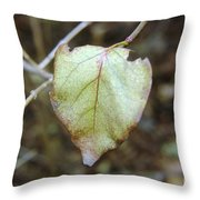Like The Last Brave Soldier  Throw Pillow
