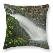 Likeke Falls 51 Throw Pillow