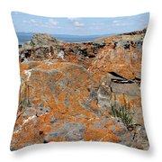 Likin' The Lichen Throw Pillow