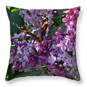 Lilac Butterfly Throw Pillow