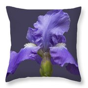 Lilac Iris Throw Pillow