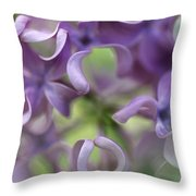 Lilac Syringa Sp Flower, Close Throw Pillow