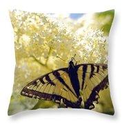 Swallowtail Lilac Spring Photo Throw Pillow