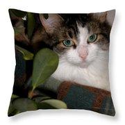 Lila's Nest Throw Pillow