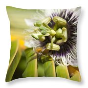 Lilikoi Throw Pillow