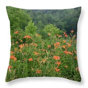 Lillies 2 Throw Pillow