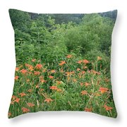 Lillies In The Valley Throw Pillow