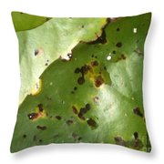 Lilly Tan Line Throw Pillow by Trish Hale