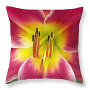 Lilly's Essence Throw Pillow
