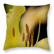 Lily - Flower - Fore And Aft Throw Pillow
