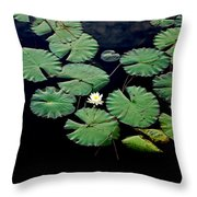 Lily Alone Throw Pillow