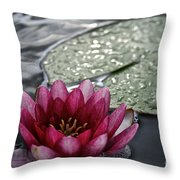 Lily And Pad Throw Pillow