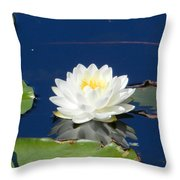 Lily Dreams Throw Pillow