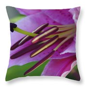Lily In Full Bloom Throw Pillow