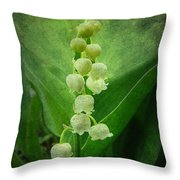 Lily Of The Valley - Convallaria Majalis Throw Pillow