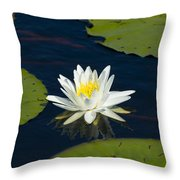 Lily Pad And Flower Throw Pillow