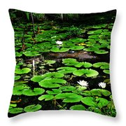 Lily Pad Turtle Camo Throw Pillow
